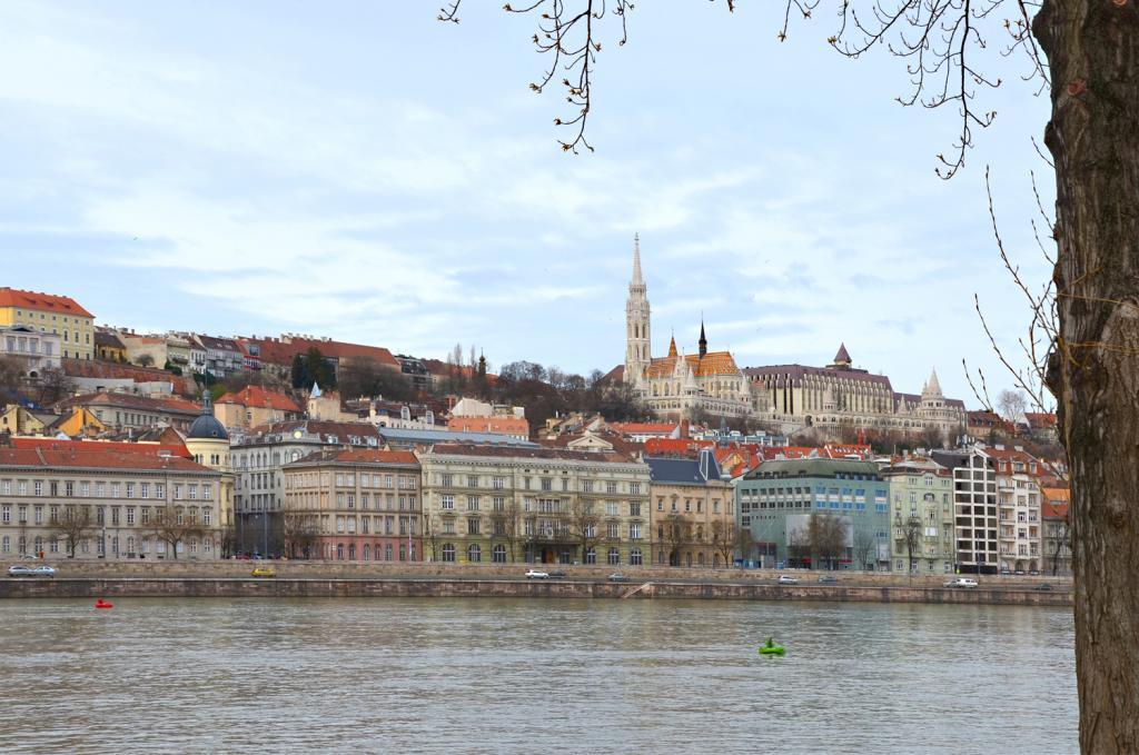 V okolí rieky
