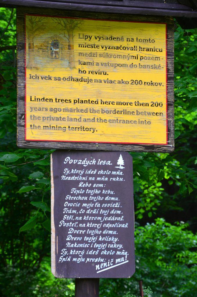 Správajte sa v lese ohľaduplne
