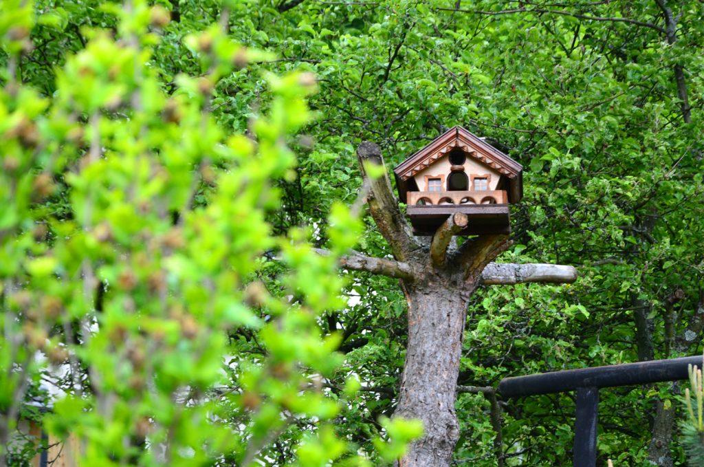 Domček pre vtáčiky