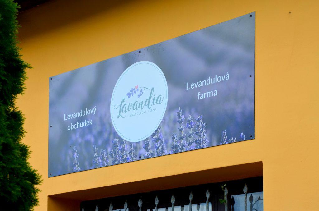 Levanduľové pole - Levanduľová farma Starovičky