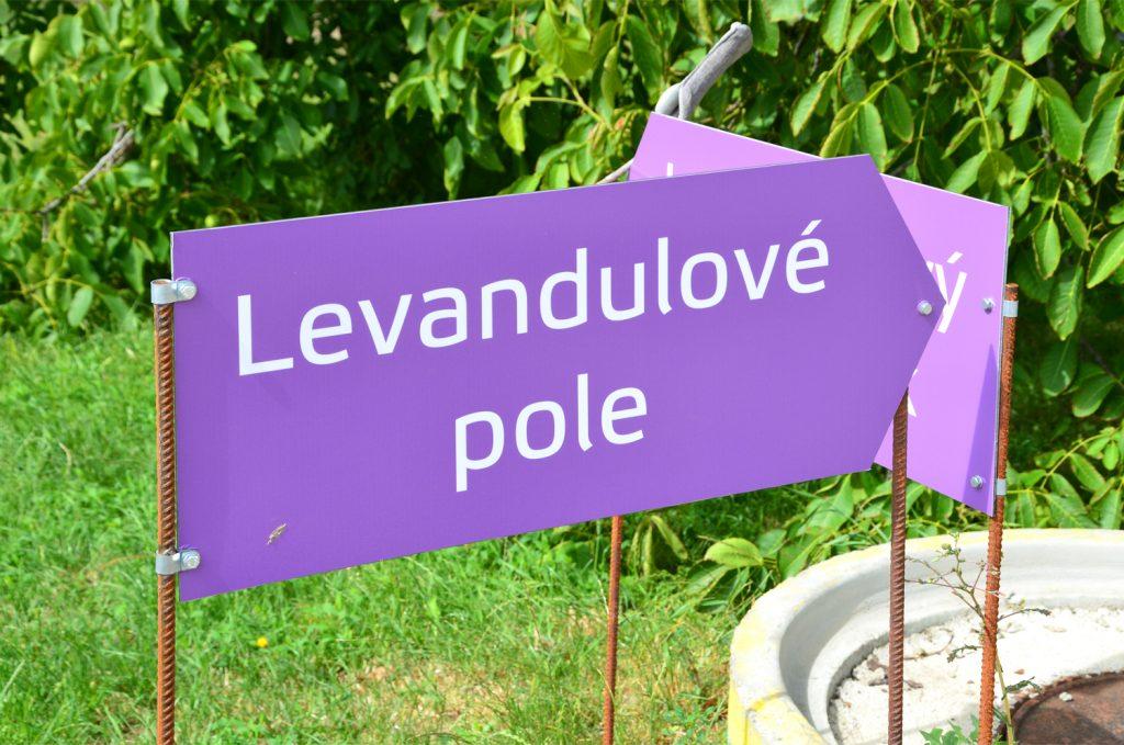 Levanduľové pole - Levanduľová farma Starovičky - cesta k poľu