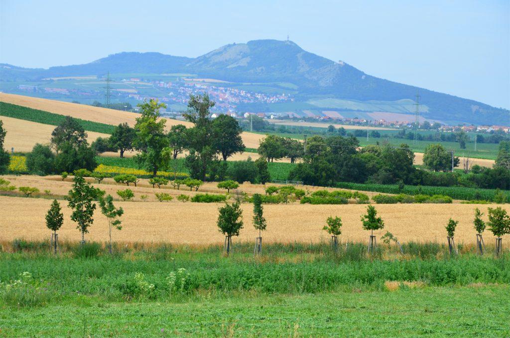 Južná Morava - v obklopení prírody