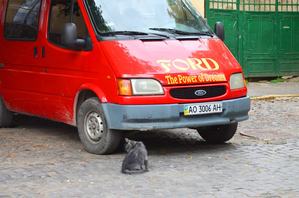 Mačiatko