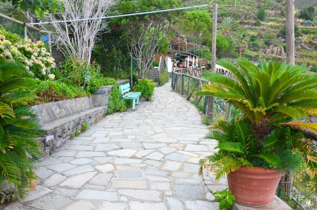 Manarola - všade navôkol sú chodníky so super výhľadom na dedinu