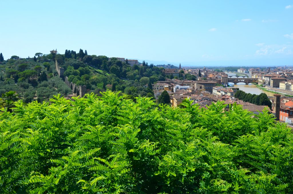 Pohľad na záhrady Boboli a Bardini