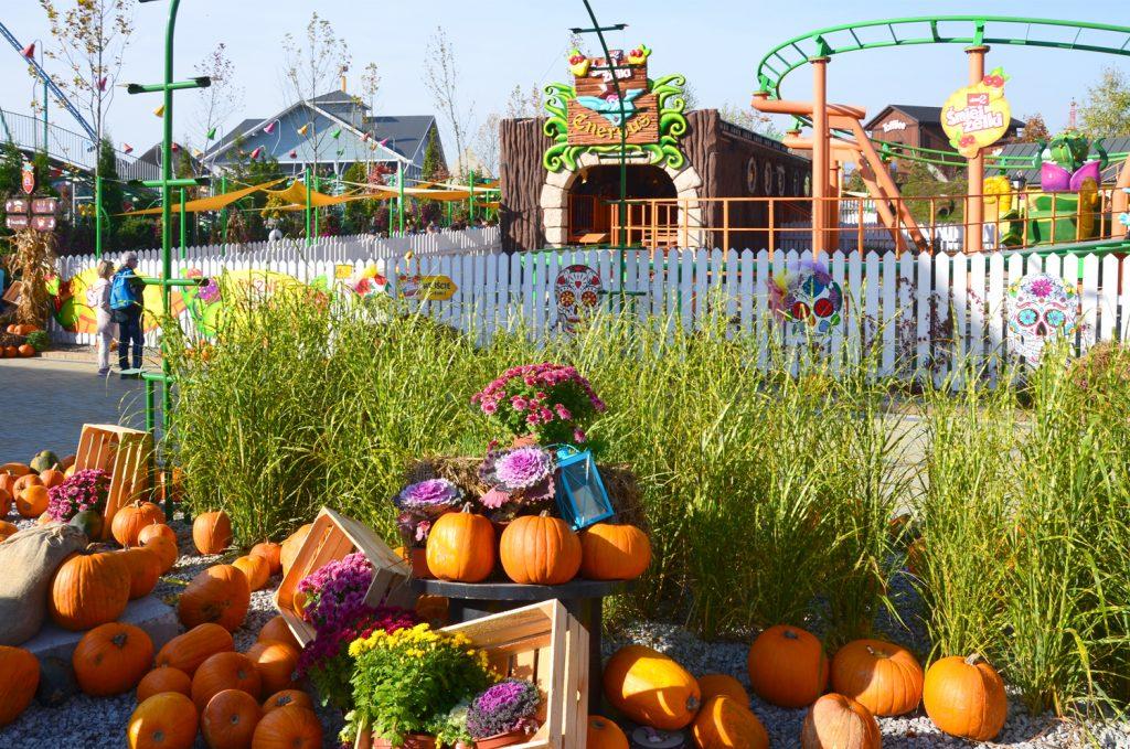 Halloween v parku - Ďalšie tekvice