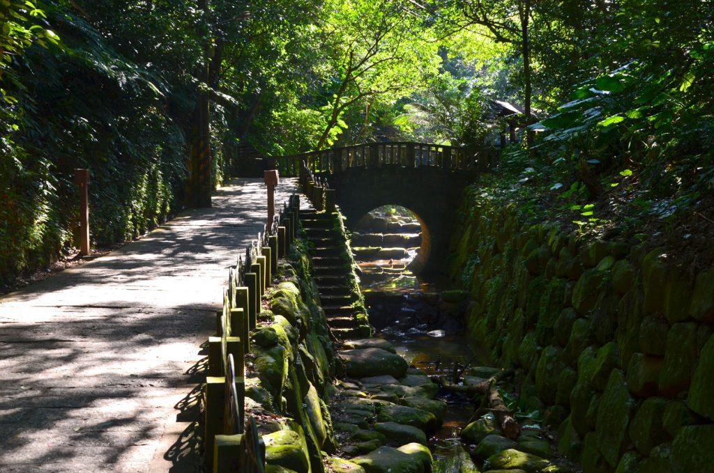 Hushan Hiking Trail ako v botanickej záhrade