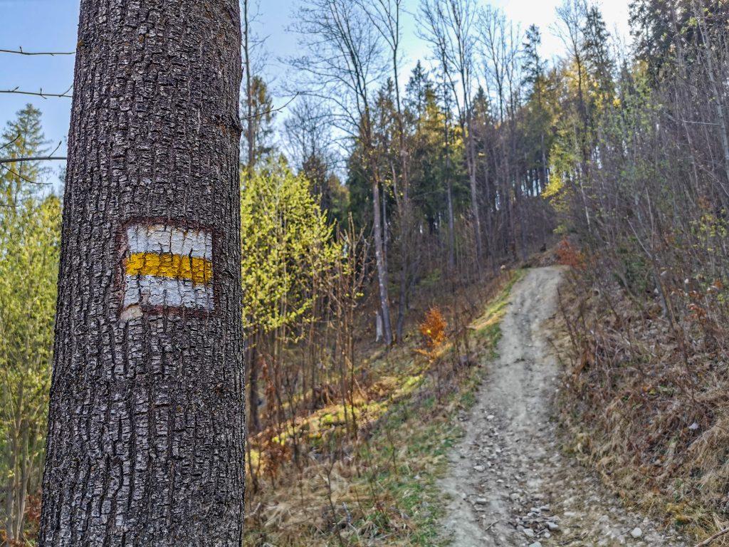 Cesta k rozhľadni vedie lesom