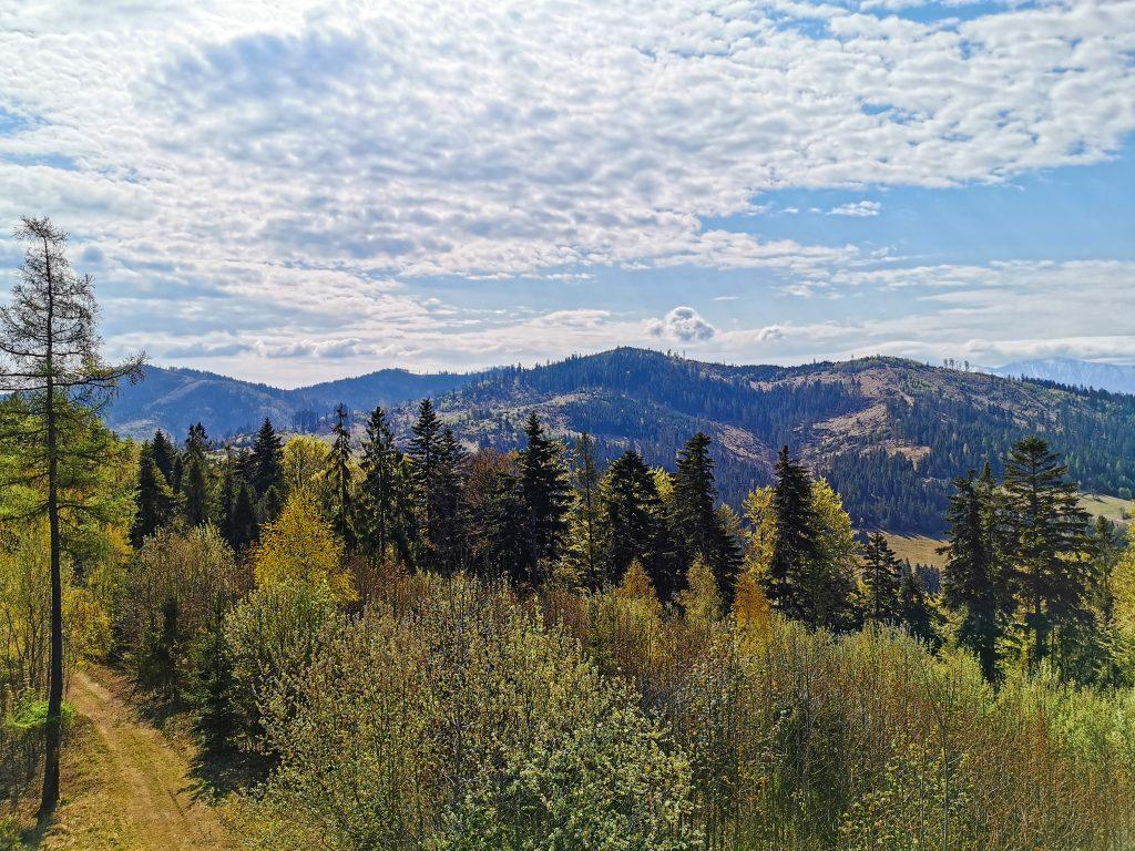Z rozhľadne je nádherný výhľad na okolitú prírodu