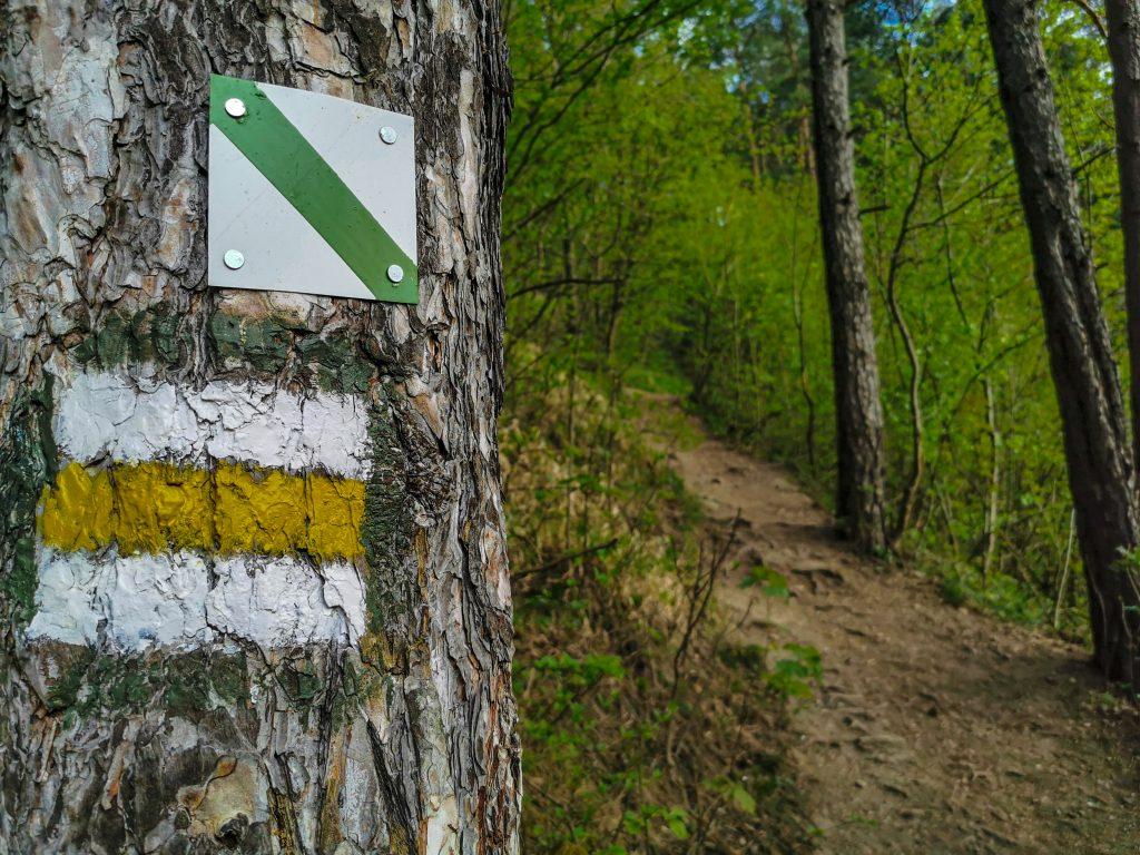 Rozhľadňa Špicák - trasa: Sledovať treba žltú značku