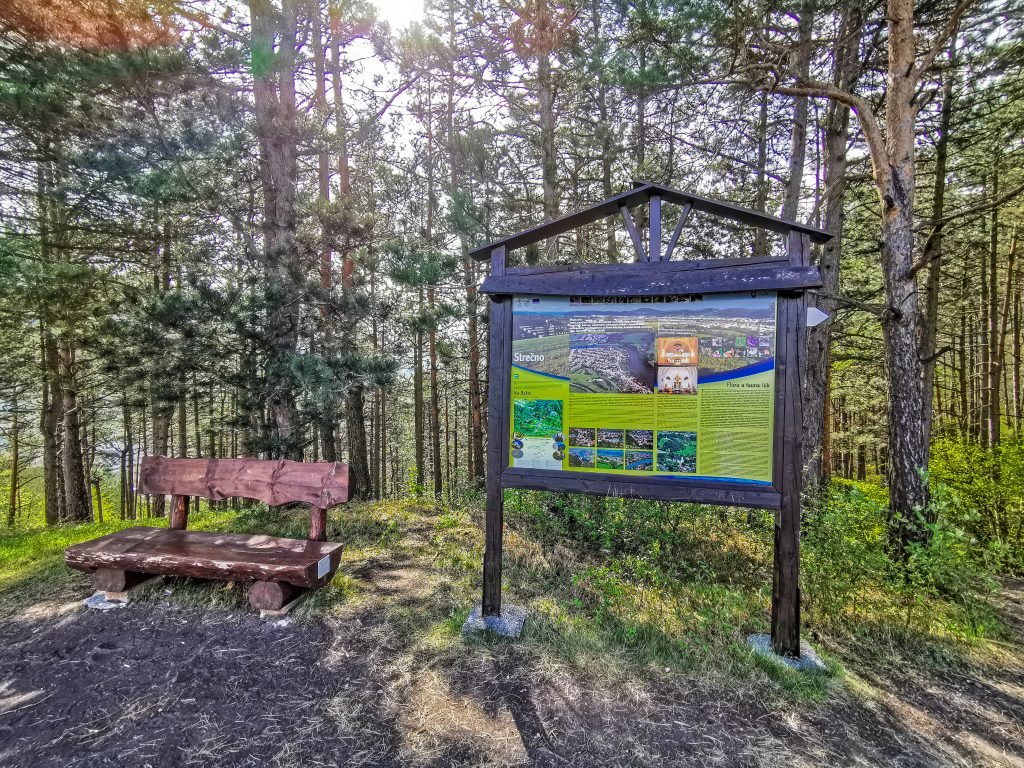 Rozhľadňa Špicák - trasa: Tesne pred začiatkom stúpania sa nachádza lavička - posledná možnosť na oddych