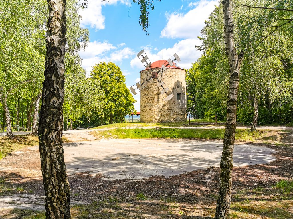 Veterný mlyn v Holíči sa nachádza v lese za mestom