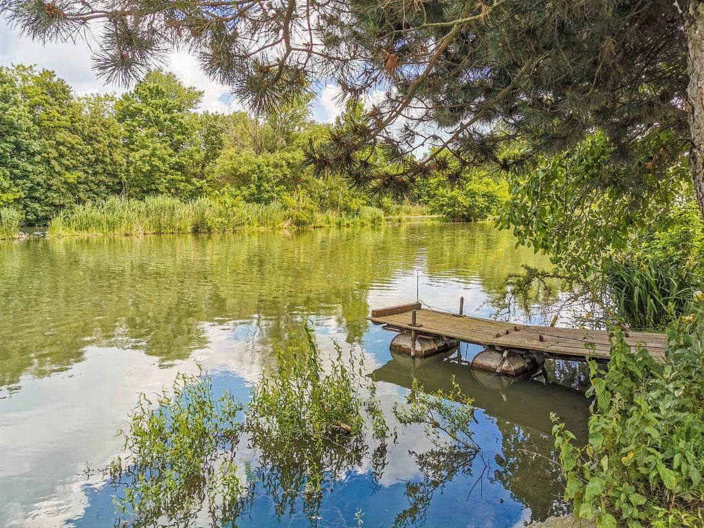 Príroda okolo Malého Dunaja