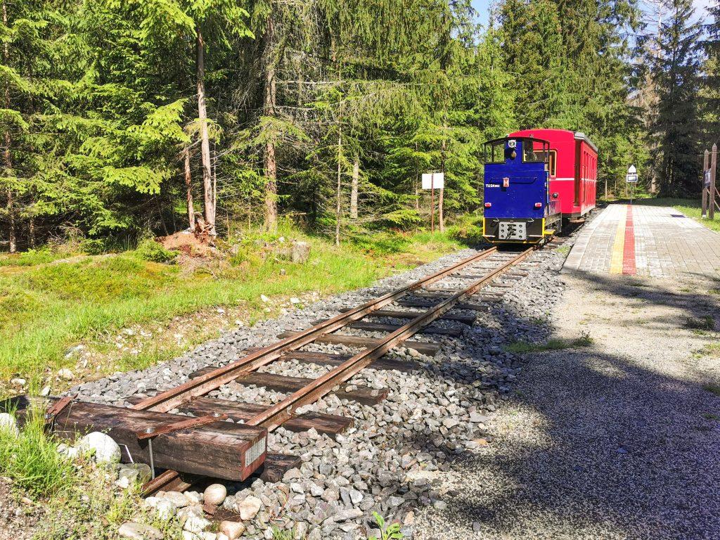 Považská lesná železnica - Vláčik je pripravený na jazdu