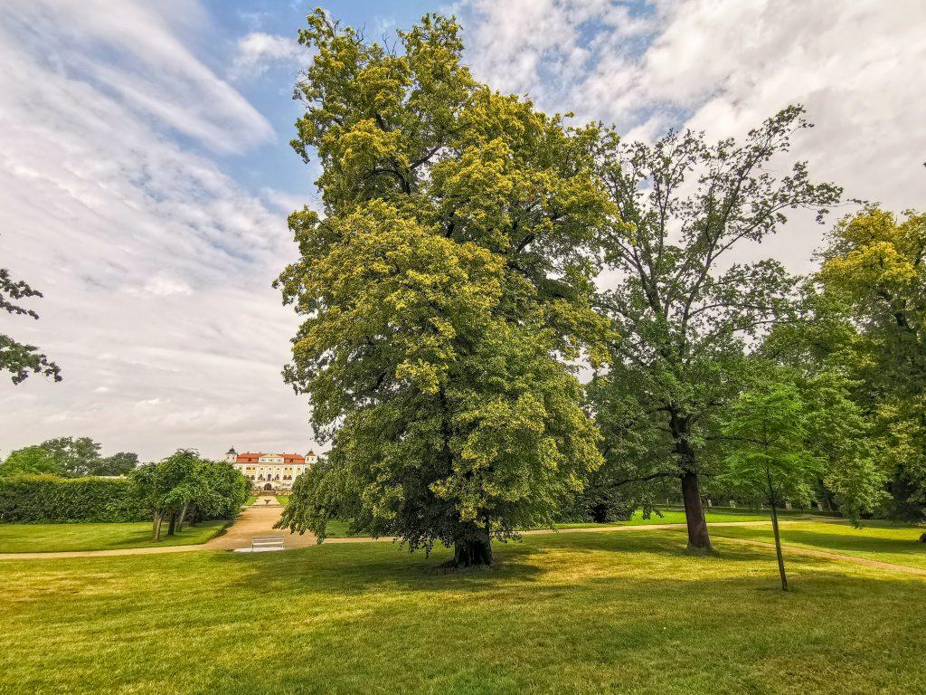 Park je pekne udržiavaný