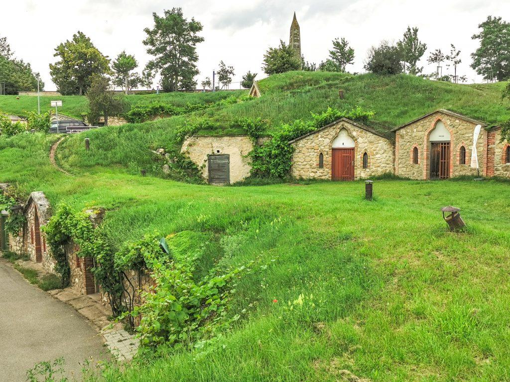 Vinárska obec Vrbice