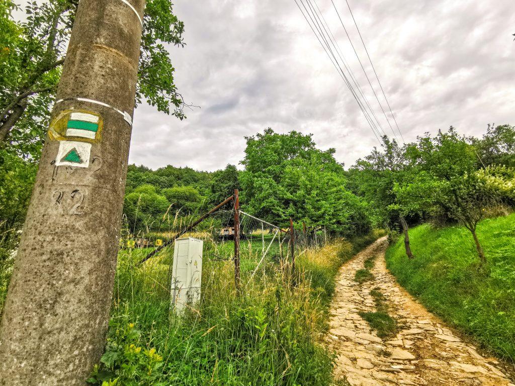Cesta k rozhľadni vedie do kopca