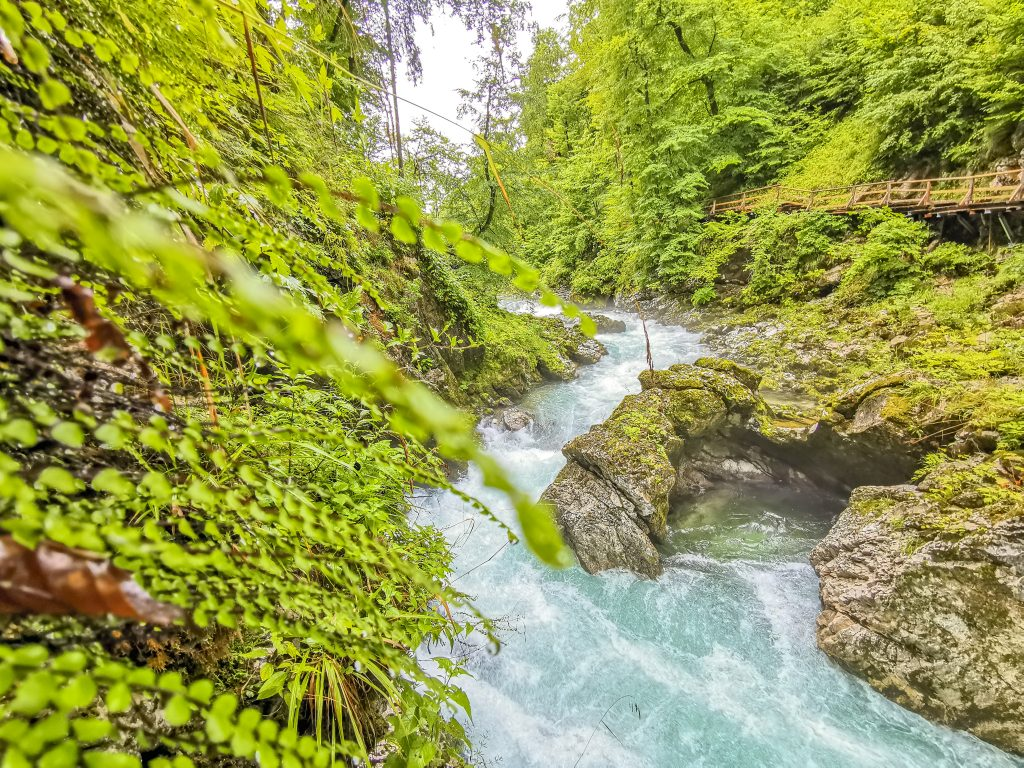 Tiesňava Vintgar - Voda v rieke má neskutočnú farbu
