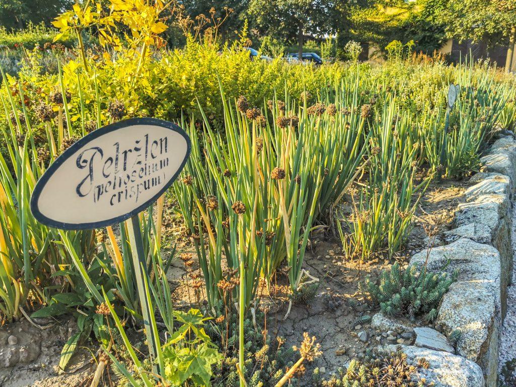 Nájdete tu aj bylinkovú a zeleninovú záhradku a záhradu s kvetmi