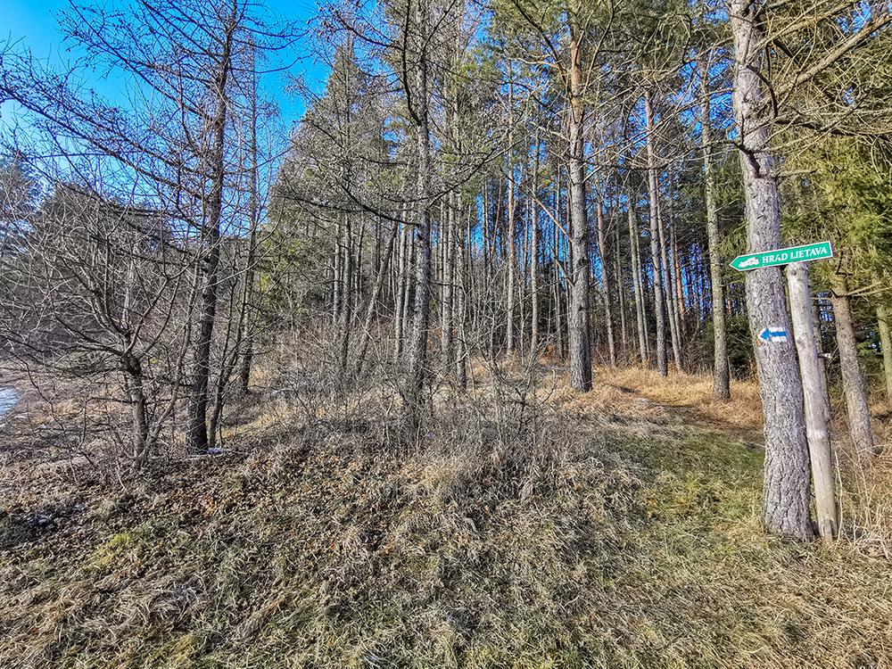 Väčšina trasy vedie cez les