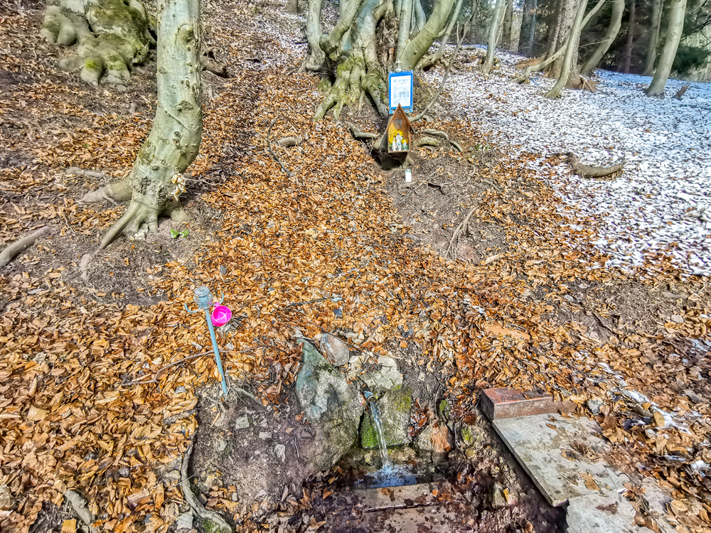 A cestou nájdete aj lesné studničky