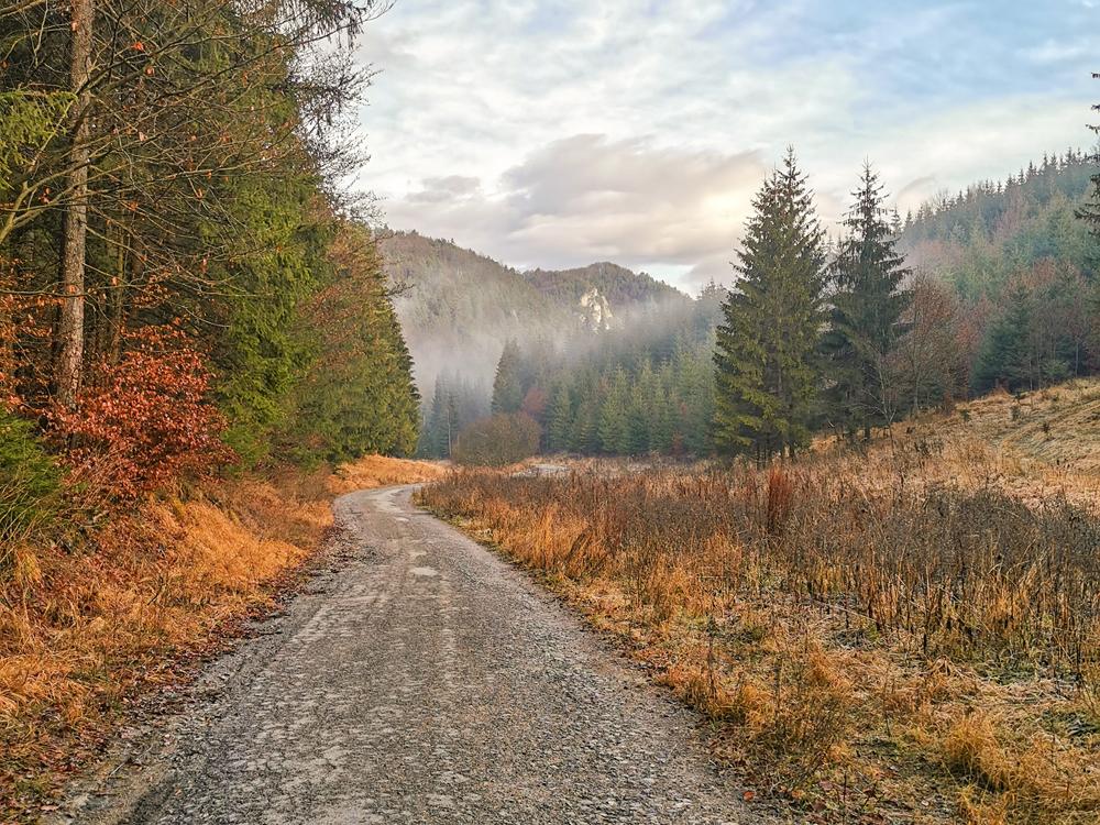 Lietavská Svinná - Dolina do Patúcha