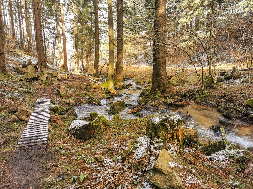 Výlety Žilina - Medzihorská dolina