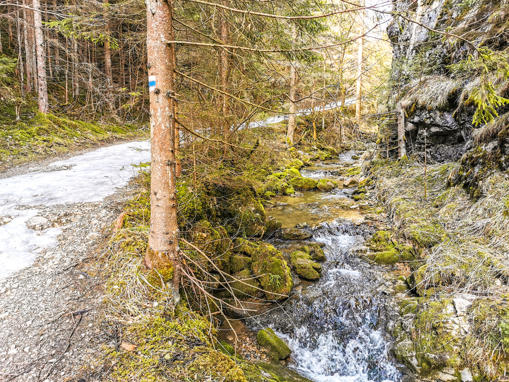 Kvačianska dolina - Ráno bola dolina takmer prázdna