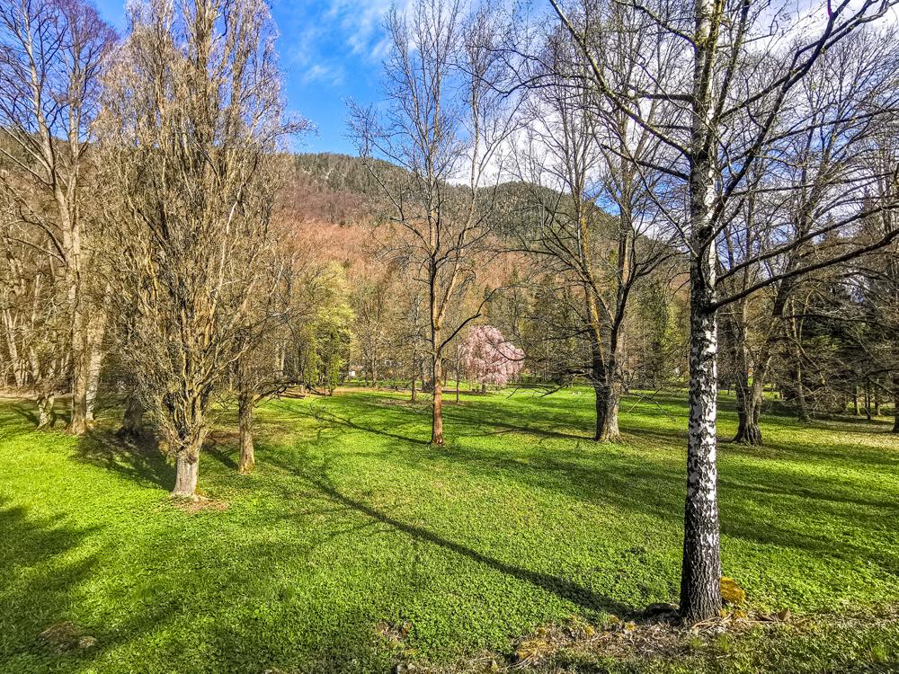 Park v Ľubochni