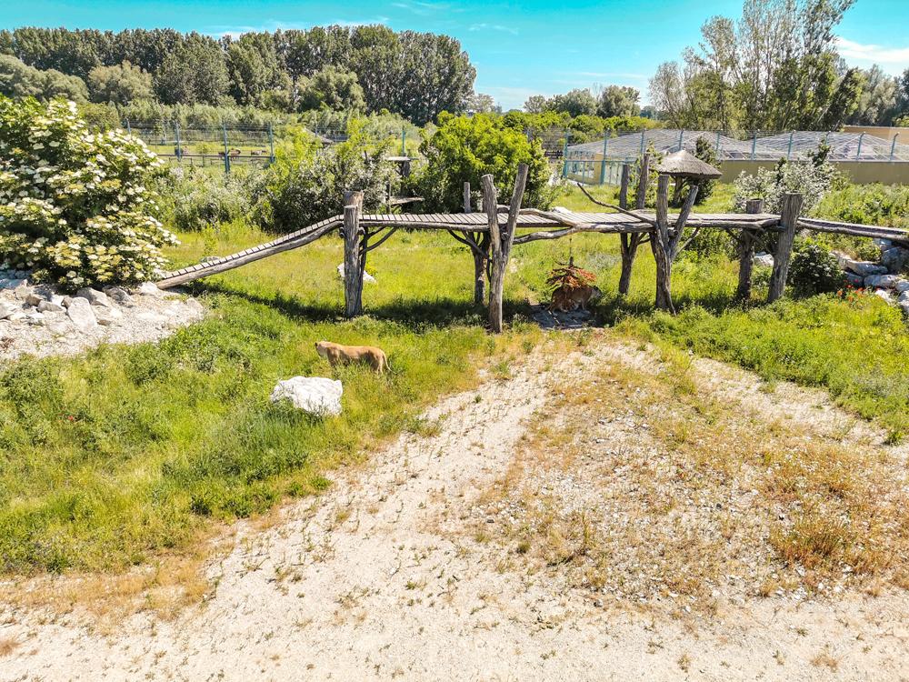 Orechová Potôň - Malkia park