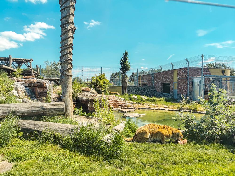 Orechová Potôň - Malkia park na Žitnom ostrove