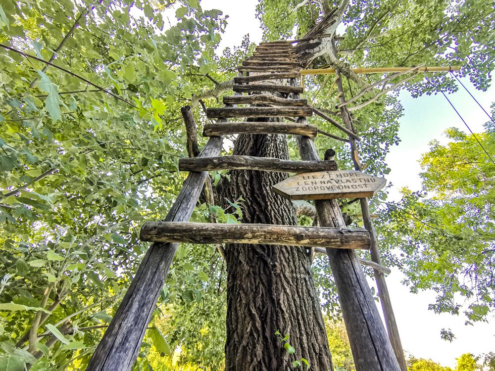 Rebrík do koruny stromov