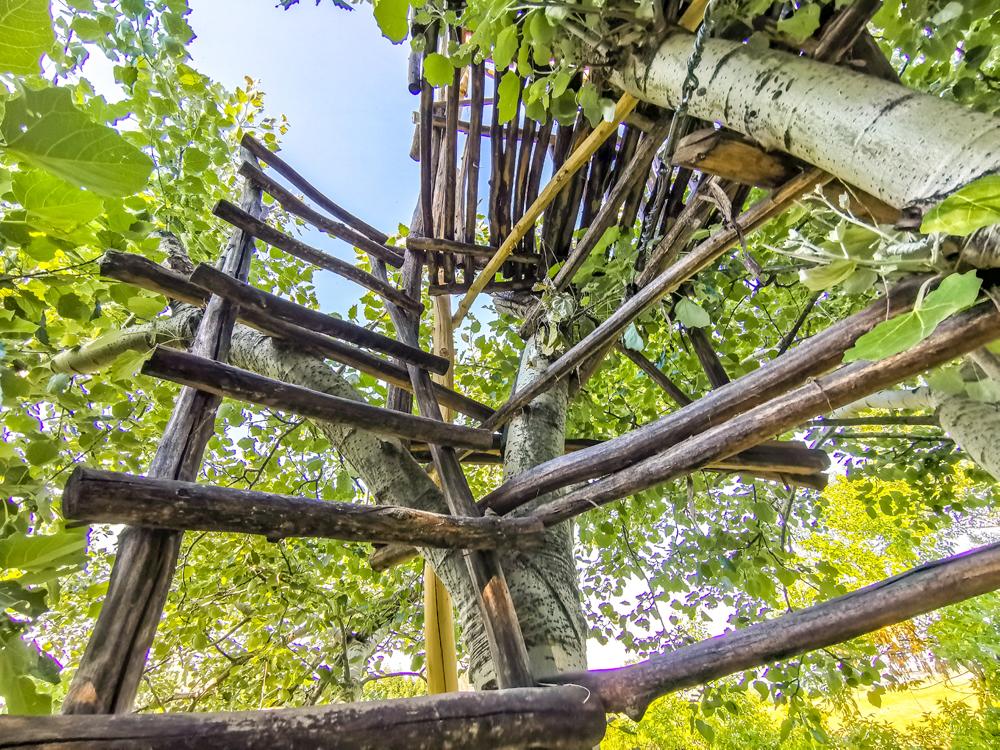 Hamuliakovo a Kalinkovo - Prírodná rozhľadňa v korunách stromov