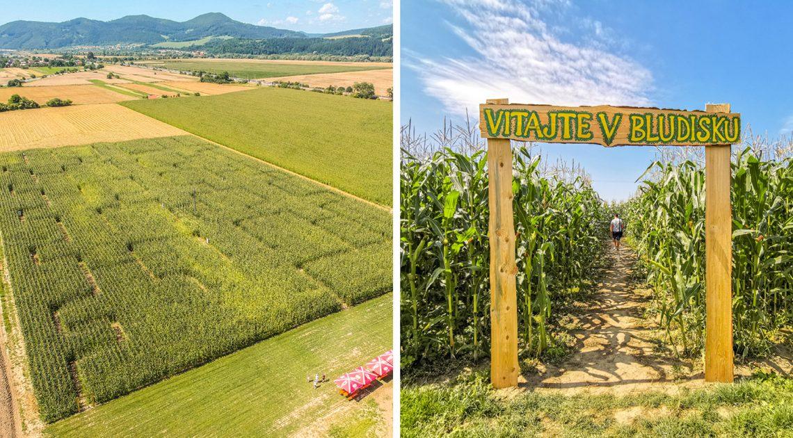 Bludisko v kukurici pri Bytči v obci Maršová – Rašov