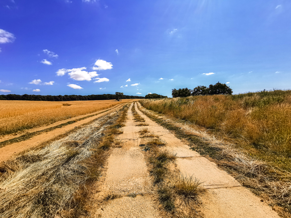 Po poľnej ceste to zvládne asi aj kočík