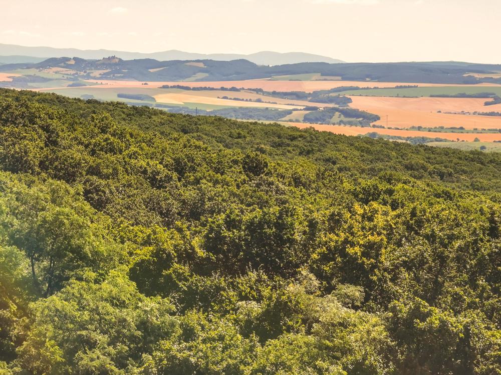 Výhľad na Hrad Branč