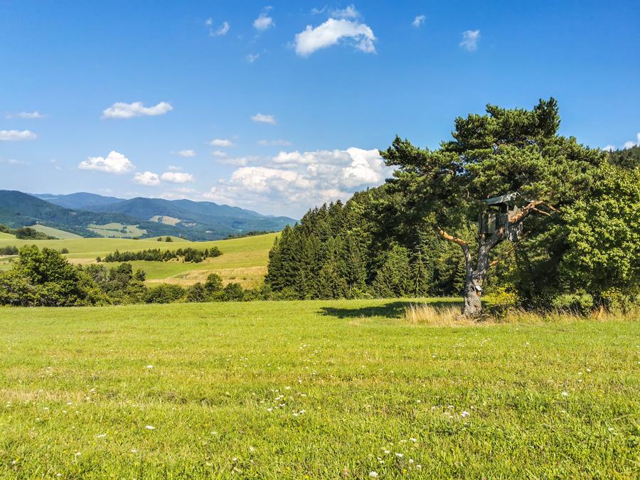 Príroda v okolí osady Ondričkovci