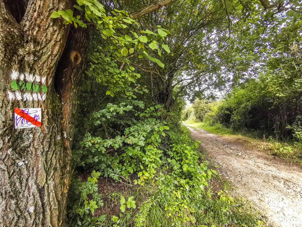 Chodník vedie cez polia a lesy