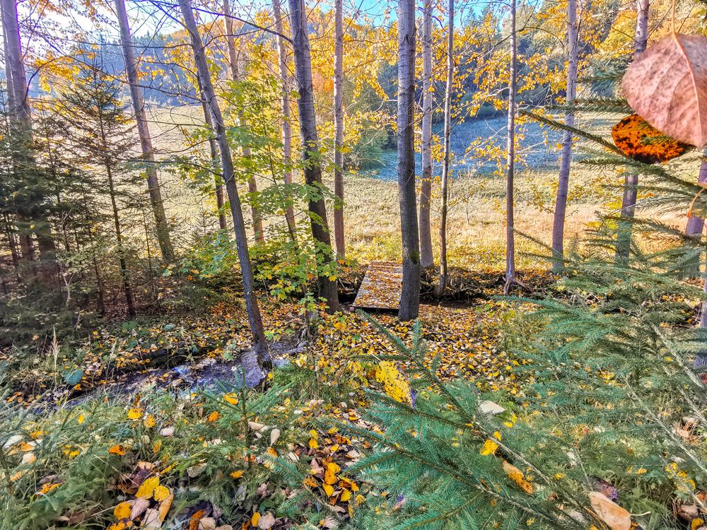 Na prechádzke v Rajeckej Lesnej