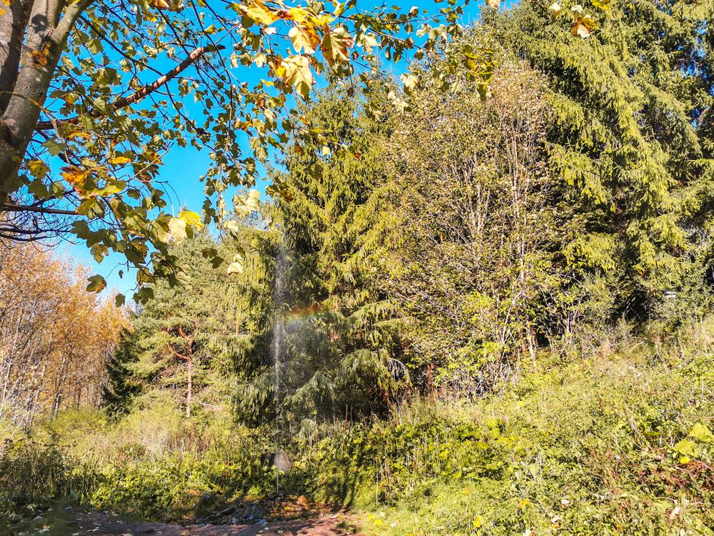 Gejzír Rajecká Lesná